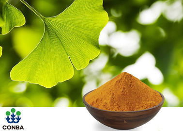USP40 Ginkgo Biloba 24 6 Extract For Pharmaceutical Raw Materials GACP